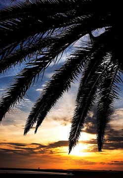 Zonsondergang op een tropisch strand van