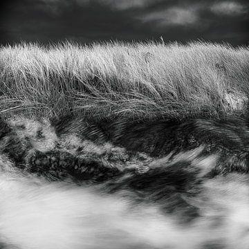 Wildes Wasser von Marijke de Leeuw - Gabriëlse