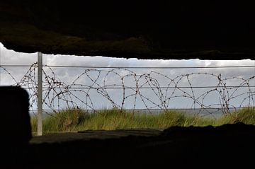 In de Bunker van DoDiLa Foto's