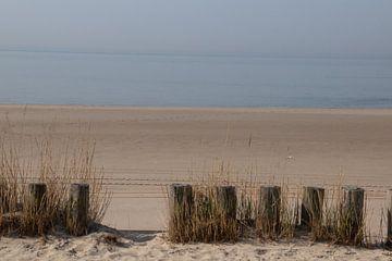 Strand Zoutelande van Kuifje-fotografie