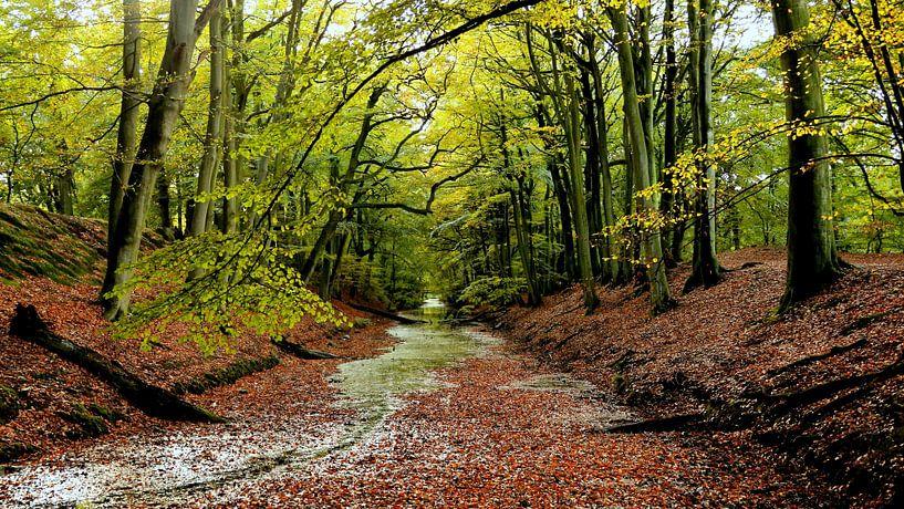 Herfst van Margaretha Gerritsen