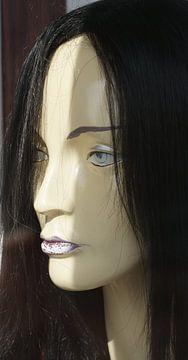 Fake hair van Ernst-jan Ter-hoeve