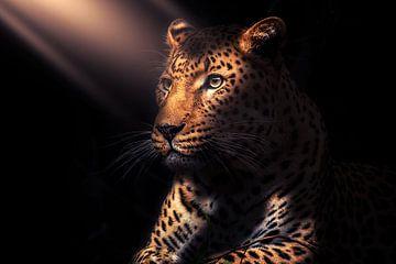 schönes Licht auf einem Panther von Bert Hooijer