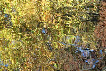 Herbstfarben im Wasser von Hanneke Ruijterlinde
