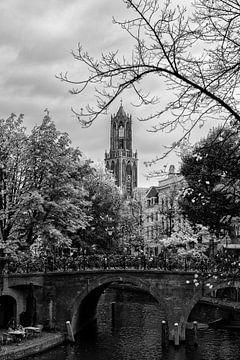 De Dom en de Oudegracht in de herfst (zwart-wit)