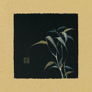 Bamboo IV, Chris Paschke