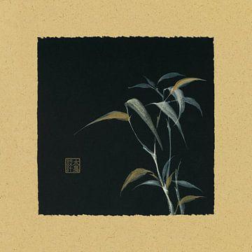 Bambus IV, Chris Paschke von Wild Apple