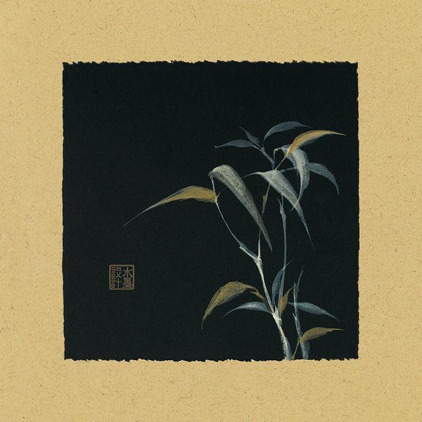 Bamboo IV, Chris Paschke van Wild Apple