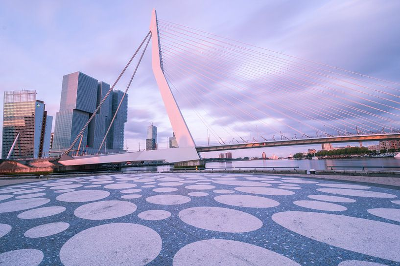 Erasmusbrug - Rotterdam van AdV Photography