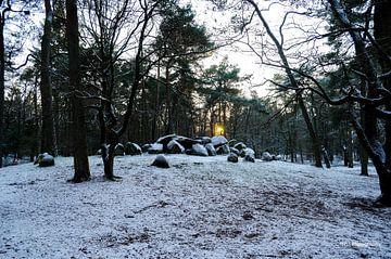D45 in de sneeuw van Hans Peter Debets