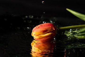 Regentropfen, die vom Himmel fallen von As Janson