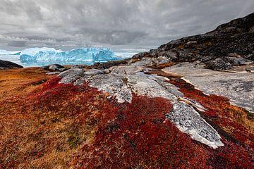 Rotes Heidekraut und Felsen mit Eisbergen im Hintergrund von Martijn Smeets