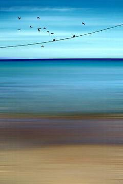 CRETAN SEA & BIRDS II v1 van
