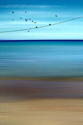 CRETAN SEA & BIRDS II v1 van Pia Schneider