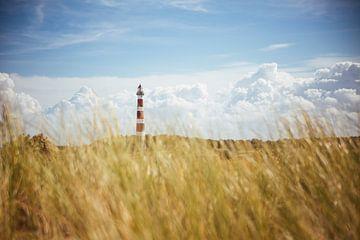 Ameland Vuurtoren & Duinen van Nico van der Vorm