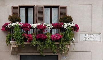 Bloemen op Balkon aan Piazza Navona von Sander van Dorp