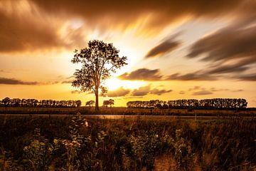 Zonsonder Holten van Frank Slaghuis