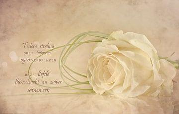 Dromerige roos van Beeld en Poëzie