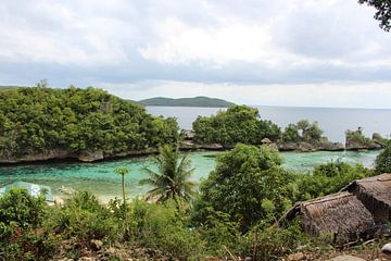 Uitzicht dorp eilandcommunity - Mababoy, Bihol, Filipijnen van Stefan Speelberg