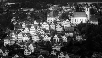Altensteig in zwart-wit