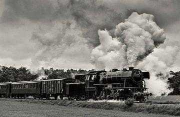 Steam locomotive driving in the countryside sur Sjoerd van der Wal
