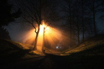 Kronenburgerpark bij nacht van Emil Cobussen