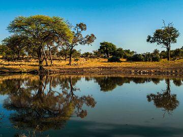 Afrikaanse rust van Rob Smit