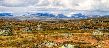 Glacier View - Hardangervidda National Park van Colin van der Bel