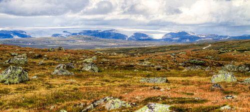 Glacier View - Hardangervidda National Park van