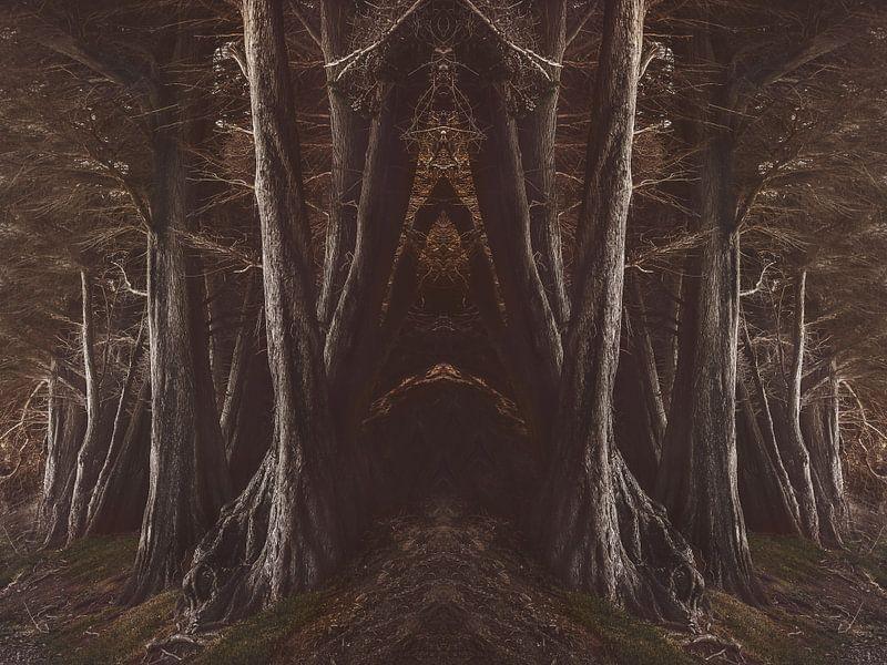Into The Dark Wood van Marina de Wit