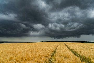 Kornfeld mit Wolken van Willi Schubert