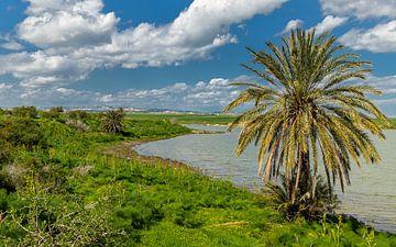 Zoutmeer van Larnaca, Cyprus van Adelheid Smitt