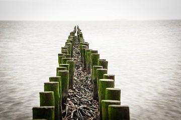 Buhne im Wattenmeer von