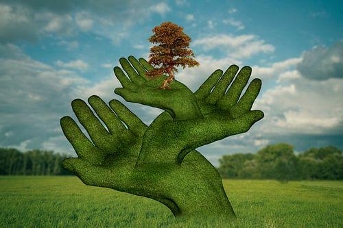 Die schützenden  Hände (1) von