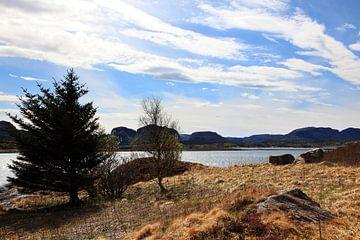Noorwegen Landschap van Anton Roeterdink
