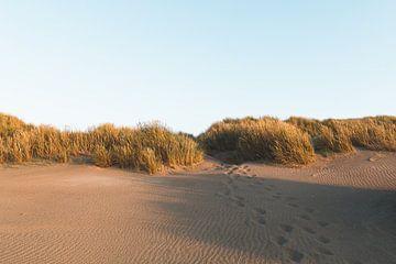Een Avond op het Strand van Wouter van der Weerd