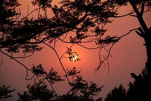 Romantische zonsondergang van CJ - Fotografie