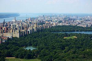 new york city ... concrete jungle V