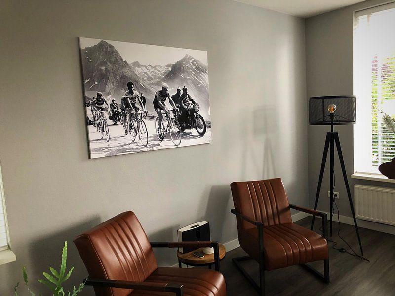 Kundenfoto: Tour de France 1963: Anquetil, Bahamontes und Poulidor von Bridgeman Images