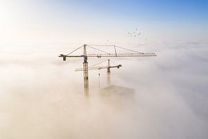 Baukräne im Nebel