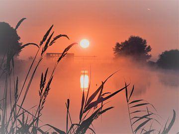 Sunrise von Wieja van der Kamp