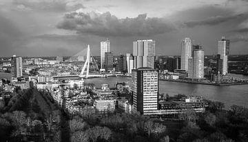 Zicht op Rotterdam van Peter Hooijmeijer