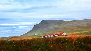 IJsland 9 van Henk Langerak