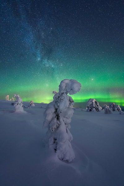 Fins Lapland Sterrenhemel en Noorderlicht van Vincent Fennis