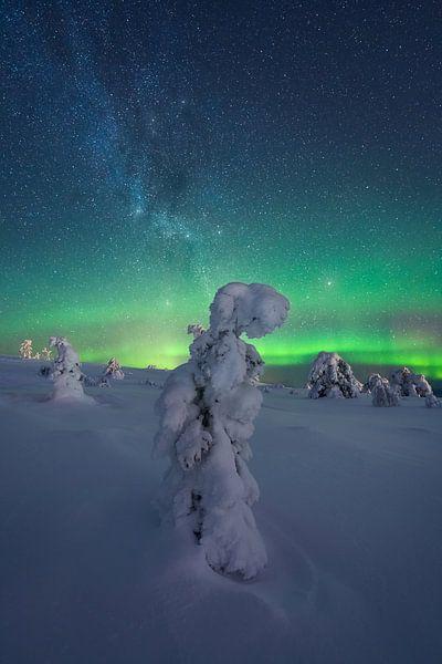 Finnisch-Lappland Sternenhimmel und Nordlicht von Vincent Fennis