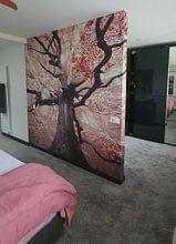Klantfoto: The blossomed witch van Rob Visser, als behang
