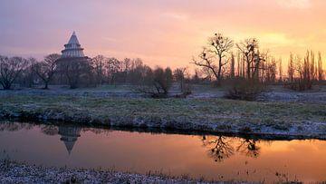 Oude Elbe in Maagdenburg met millenniumtoren in het Elbauenpark van Heiko Kueverling