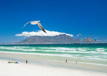 Möwe und Drachen über dem Strand von Blouberg mit Kapstadt und dem Tafelberg im Hintergrund von Teun Janssen