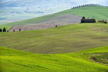Toscane van Carla Vermeend