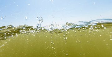 splash sur Arjan van Duijvenboden